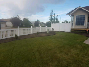 Vinyl fence, chain link, and treated lumber fence