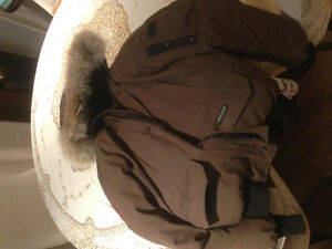 Brown Canada goose. Great condition