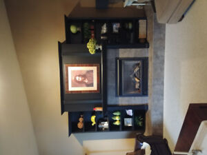 Natual gas fireplace for sale