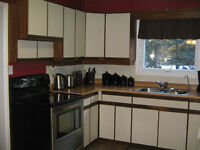 Kitchen Cabinets with Countertop and sink