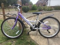 """Girl's silver/purple 24"""" cycle - excellent condition"""