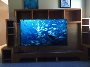 Entertainment Unit and Smart TV