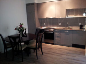 FURNISHED CONDO (1+den) /Fashion District/ JANUARY 1st