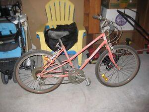 Mountain Bike Cornwall Ontario image 1