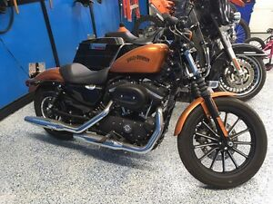 HD Sportster in New Condition