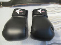 2 Pair Boxing Gloves