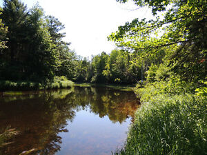 Riverfront property in Nine Mile River - River Country Estates