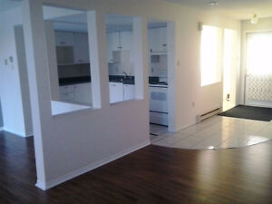 A beautiful  town house in Clayton Park