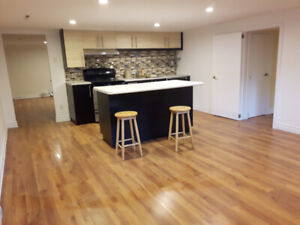 Large 4 1/2 for rent west island / grand 4 1/2