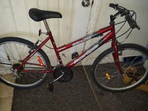 2 Womens/Girls Mountain Bikes