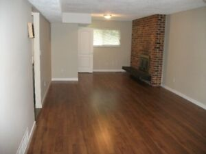 Ground level suite for rent