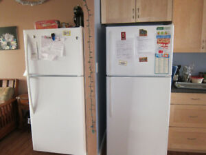 New Fridge
