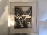Jesmond dene framed photo by David Leighton