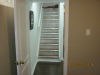 1 BEDROOM BASEMENT APARTMENT WOODBRIDGE $950