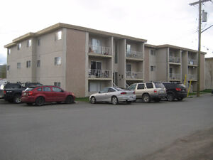 Clean And Updated 1 Bedroom Apartment - Available May 1st