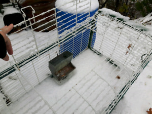 Cage à lapin