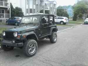 Jeep tj trail ready