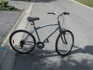 Adult Commuter Bike For Sale London Ontario image 3