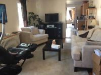 Queen Room for rent in large flat
