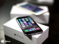 2 MONTH OLD MINT IPHONE 6 BUNDLE TRADE FOR SAMSUNG S6 EDGE PLUS