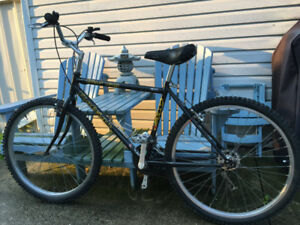 Raleigh Discovery for sale