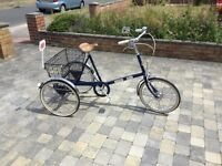 Beautiful Pashley adult tricycle