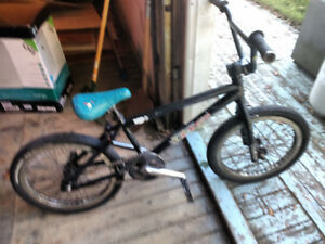 Hoffman Disrupter BMX Bike