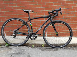 Raleigh RXW - 48cm - NEW