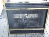 DOUBLE SIDED NATURAL GAS OR PROPANE FIREPLACE INSERT;