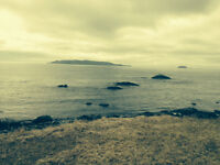 Ocean Land for sale Bears Cove Road Witless Bay Newfoundland