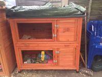 Rabbit or Guinea pig hutch