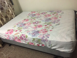 Queen Size Mattress and Box Spring - $125