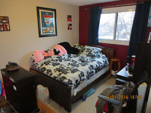 Spacious 5 Bedroom Student Home in Thorold (1 Room Available)