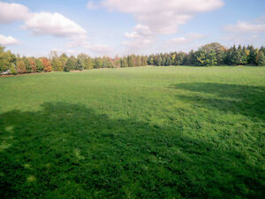 Build Your Dream Home on 9.19 Acres, Burlington
