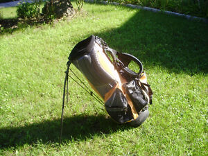 jazzgolf carry stand bag Cambridge Kitchener Area image 1