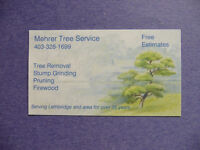 TREE SERVICE       pruning/tree removals/stump grinding