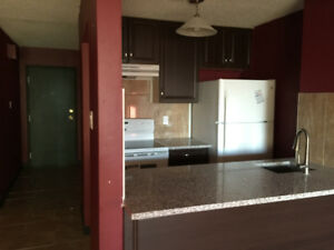 Downtown 1 bedroom unit. Spacious and convenient