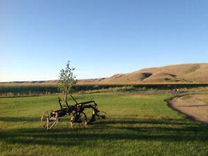 Riverbottom Farmland for Sale
