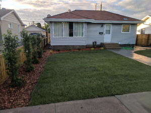 2 Bed Suite, utilities included, separate entrance and laundry
