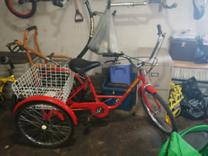 Belize Canada Adult Tricycle ( Brand New )