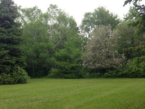 Cottage Lot in Brooklyn (Mill River Area)