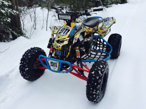Ds 450 can-am