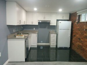 Newly renovated 2 BR unit for rent – East Mountain Hamilton