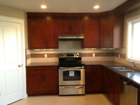 Kitchen cabinet part time sale rep.