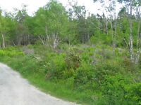 BUILDING LOT IN HRM ZONED MU