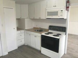 Renovated 2 Bedroom Apartment in Gananoque!