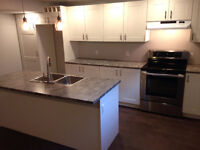 Brand New All Inclusive 1 Bdrm Apt with A/C, Laundry, Dishwasher