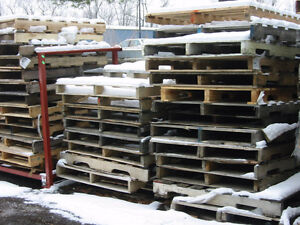 Looking for pallets or other scrap lumber