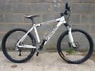 FOCUS SPORTS mountain bike