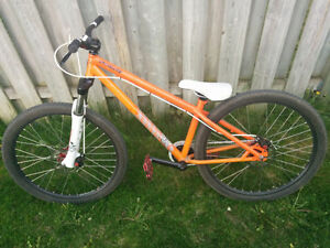 Specialized P1 Dirtjumper